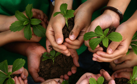 Educación Ambiental en México | Educacion, ecologia y TIC | Scoop.it