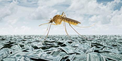 CNA: Esperaban hacerse de oro con el Zika pero... Dificultades para Oxitec, la empresa de los mosquitos transgénicos | La R-Evolución de ARMAK | Scoop.it
