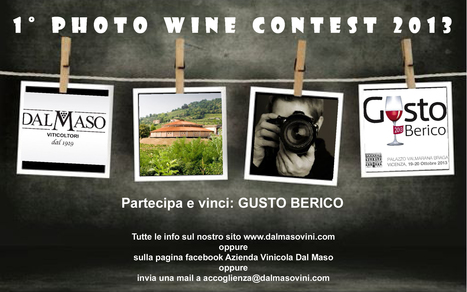 Photo Wine Contest 2013 | Italian Wine - Dal Maso Winery | Scoop.it