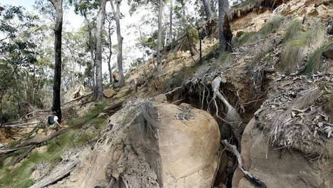 Sugarloaf mine subsidence areas may be off limits for a decade: photos, video - Newcastle Herald | Sugarloaf SCA | Scoop.it