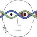 Génétique : Européens, tous cousins ! - Presseurop (français) | Histoire Familiale | Scoop.it