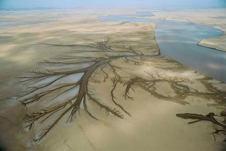 El desierto de Sonora: donde las dunas se encuentran con el océano | Viaja Maja! | Scoop.it
