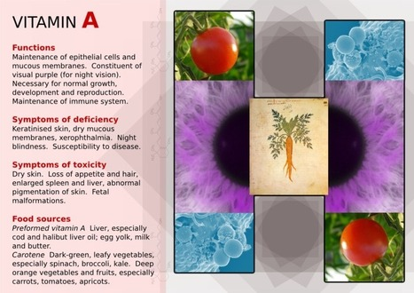 Investing in Nutrient Dense Foods: Vitamin A | Sustainable Futures | Scoop.it