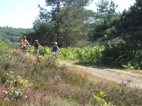Cyclotourisme - Prenez le train pour vos sorties vélo - Creuse LIMOUSIN | Cyclotourisme - véloroutes et voies vertes | Scoop.it