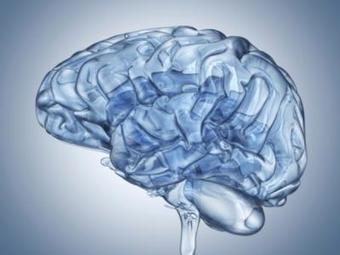 A más inteligencia, menor riesgo de esquizofrenia | Informática Educativa y TIC | Scoop.it