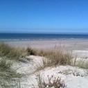 Naissance du premier parc naturel marin de la façade Manche – mer du Nord | Enviro2B | Les news en normandie avec Cotentin-webradio | Scoop.it