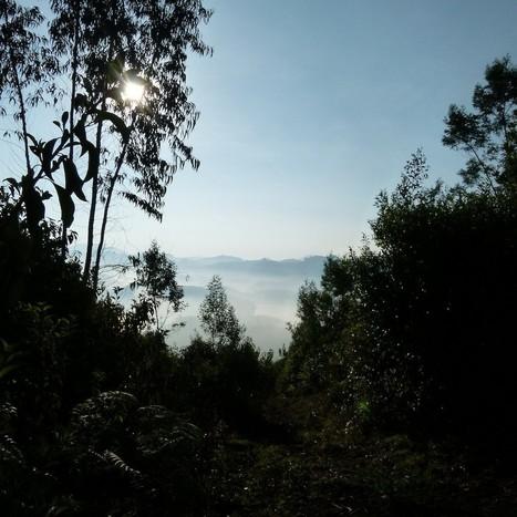 Red Hills, la casita con vistas al lago Emerald en Ooty. | Aventura en India | Scoop.it
