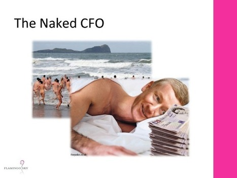 The Naked CFO | ieOnDemand | Business Education | Scoop.it