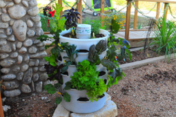 Welcome To Garden Towers of Austin | Vertical Farm - Food Factory | Scoop.it