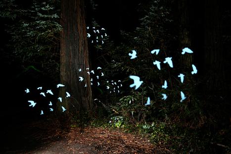 DIY: Make Crazy Detailed Light Paintings with Photo Light Stencils | Photojojo | Arte y Cultura en circulación | Scoop.it