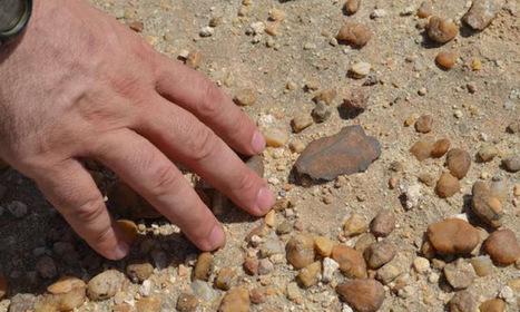 New support for human evolution in grasslands | Histoire et Archéologie | Scoop.it