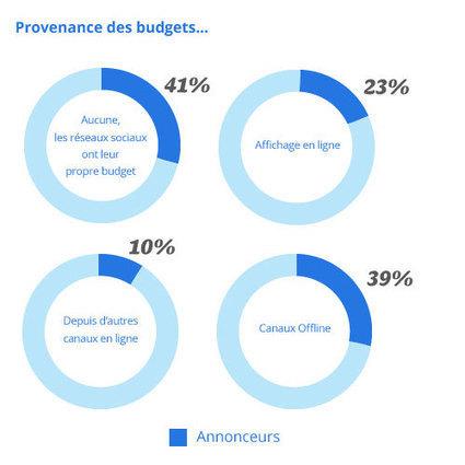 Usages et pratiques de la publicité sur les réseaux sociaux  en 2013 | Actualités sur le Social Media Management | Scoop.it