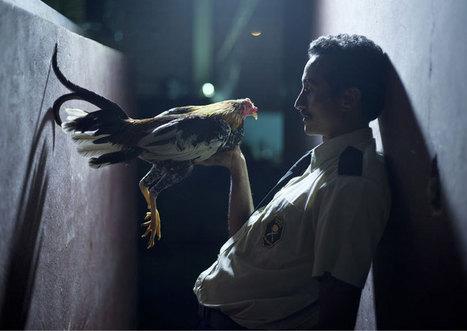 La Costa Rica de los techos herrumbrados | Movies | Scoop.it
