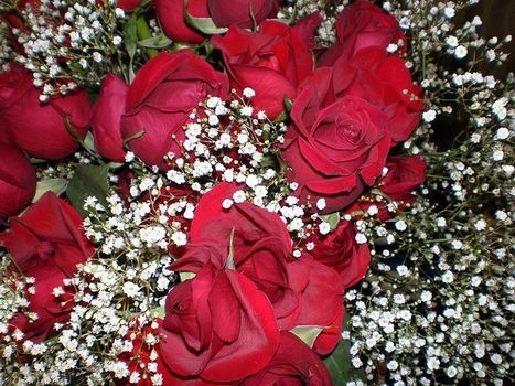 Mother's Day will be fine thanks to eCommerce - News - Bubblews | Bubblews by NB | Scoop.it