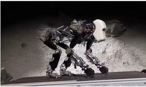iStruct : un gorille issu de la planète des singes robots | CDI RAISMES - MA | Scoop.it