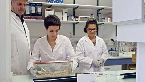 ARTE+7   Cholestérol : le grand bluff   La résilience territoriale pour un avenir durable   Scoop.it