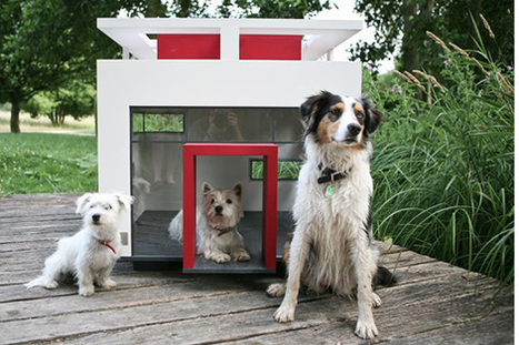 Burgess Pet Care » Blog Archive » The World's 15 Most Outrageous Dog Houses | Dogs | Scoop.it
