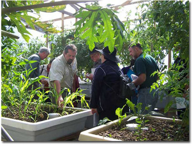 Our 1 (one) day PERTH Discover Aquaponics Training courses   Aquaponics World View   Scoop.it