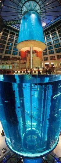 Aquariums dans le monde | Actu Tourisme | Scoop.it