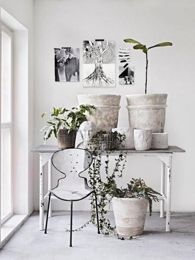 Les étoiles grises: *** C'est Lundi ... *** | Déco fait maison, récup, upcycling, jardinage | Scoop.it