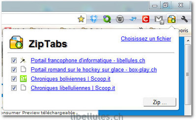 ZipTabs - Le blog de libellules.ch | Geeks | Scoop.it