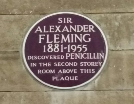 ¿Quién descubrió la penicilina: Alexander Fleming o Clodomiro Picado? | microBIO | Scoop.it