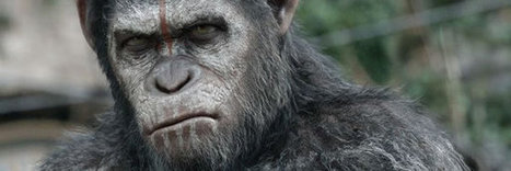 Dawn of the Planet of the Apes Featurette on Weta VFX   Film & Music   Scoop.it