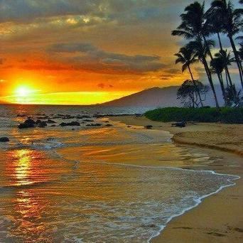 Twitter / Amazing_Beaches: Maui, Hawaii http://t.co/DtzwjViM2I | * ~ * Good Bye @hawaiibuzz * ~ * | Scoop.it