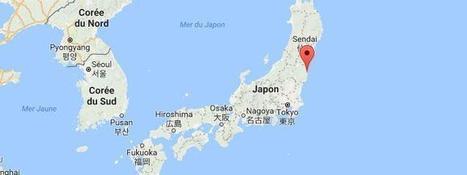 Japon : une alerte au tsunami déclenchée après un fort séisme au large de Fukushima - France TV Info | Japon : séisme, tsunami & conséquences | Scoop.it
