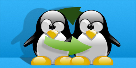 "What Is a Linux SWAP Partition, And What Does It Do? | ""Computação Forense"" 