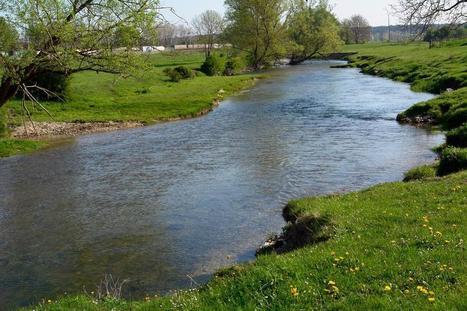 Cet été, la pollution des rivières sera mesurée | Les colocs du jardin | Scoop.it