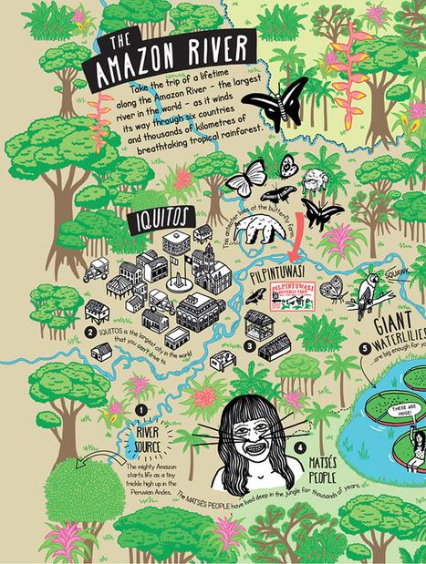 Unfolding Journeys: Amazon Adventure | Rainforest CLASSROOM: Inspiration, Resources,and More | Scoop.it