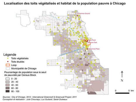 Le toit végétalisé, marqueur des dynamiques de distinctions métropolitaines : le cas de Chicago — Géoconfluences | Marketing et management  public | Scoop.it