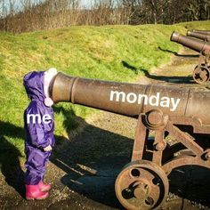 Who Likes Monday Mornings? | Funny Stuff | Scoop.it