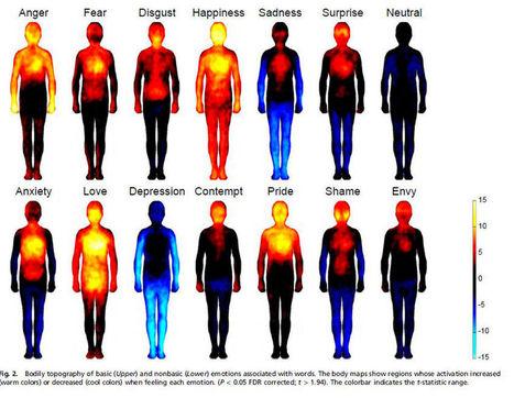 La cartographie des émotions : Allodocteurs.fr | Knowledge is power | Scoop.it