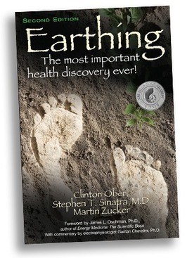 Home - Earthing_Institute | LOCAL HEALTH TRADITIONS | Scoop.it
