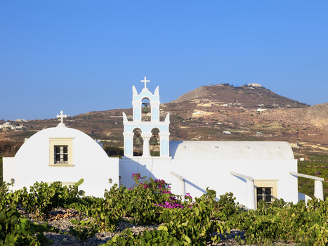 Where to Find the Best Wines in the World Right Now | Travel To Santorini | Scoop.it