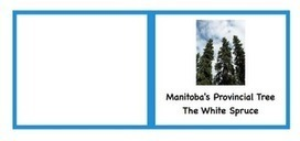 True North: Our Canadian Homeschool: Canadian Geography Lapbooks - Saskatchewan and Manitoba | HCS Learning Commons Newsletter | Scoop.it