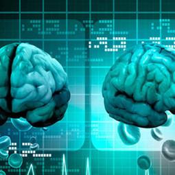 10 Curiosidades sobre el sistema nervioso central que no ¿Sabías? | Datos Curiosos de la Ciencia y el Mundo | Scoop.it