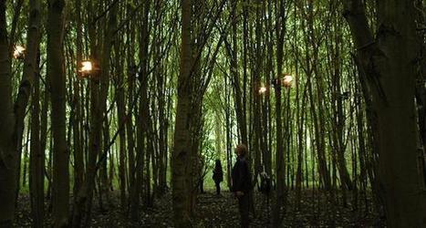 Composed Nature (Staalplaat & Lola landscape architects) - installation sonore | DESARTSONNANTS - CRÉATION SONORE ET ENVIRONNEMENT - ENVIRONMENTAL SOUND ART - PAYSAGES ET ECOLOGIE SONORE | Scoop.it
