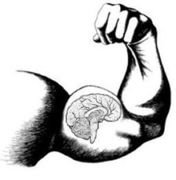 Successful Brain Aging: Is Bigger Always Better? | Use it, don't lose it! | Scoop.it