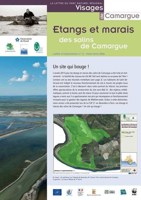 Lettre d'information du Parc naturel régional de Camargue,, Mars Avril 2016 | Camargue | Scoop.it
