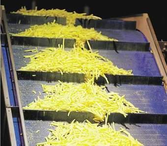 Les industriels veulent réinventer la pomme de terre   la pomme de terre du nord pas de calais   Scoop.it