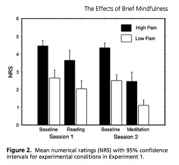 The effects of brief mindfulness meditation training on experimentally induced pain   J Pain   Contemplative Science   Scoop.it