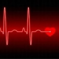 Cardiac Rehabilitation Week | Heart diseases and Heart Conditions | Scoop.it