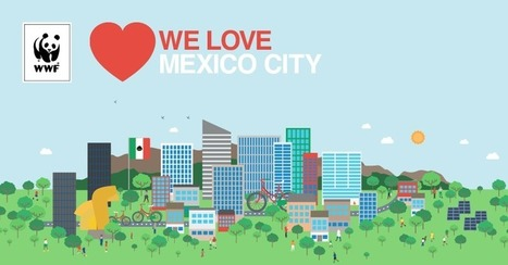 Amamos  Mexico City | Urban Landscape: science, practice and design. | Scoop.it