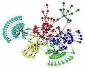Algoritmo que puede ayudar a identificar la fuente de crímenes, epidemias  y rumores | Social Network Analysis | Scoop.it