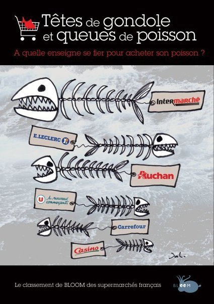 A quelle enseigne se fier pour acheter son poisson ? | Economie Responsable et Consommation Collaborative | Scoop.it