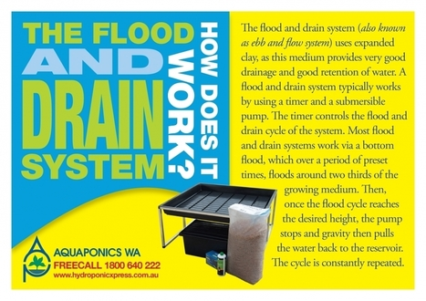 Flood and Drain Kit 1160mm x 1160mm | Hydroponic Xpress | Scoop.it