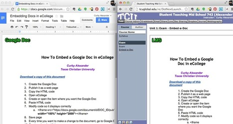 Outsmarting the LMS: Embedding Google Docs | Elementary Technology Education | Scoop.it
